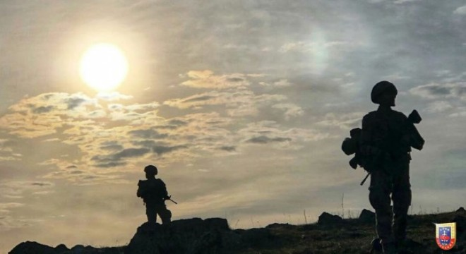 Bitlis'te 1 terörist etkisiz hale getirildi