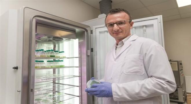 Boğaziçi Üniversitesi, Avrupa Enerji Araştırma Birliği Biyoenerji Platformu'na tam üye olarak kabul edildi