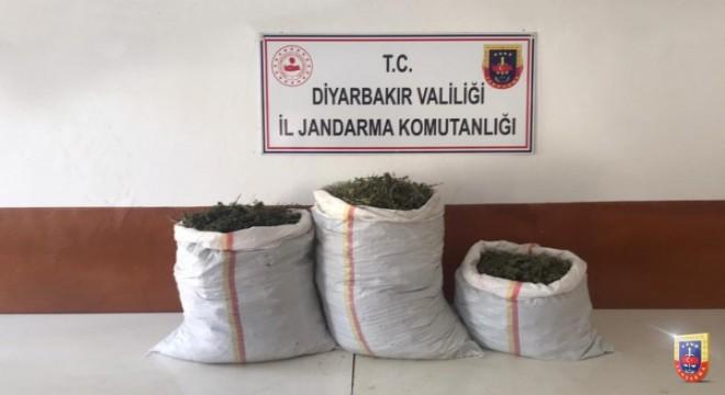 Diyarbakır'da narko terör operasyonu