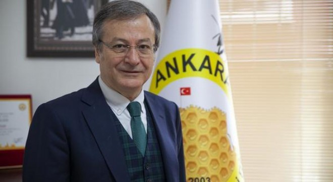 Dünya Arı Günü'nün ev sahibi Ankara