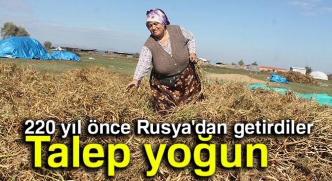 Kazaklardan miras kalan müthiş lezzet