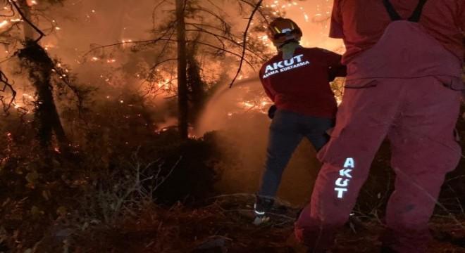 Mersin ve Manavgat'taki orman yangınları