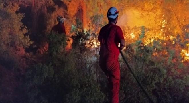 Son 6 günde 130 orman yangını kontrol altına alındı