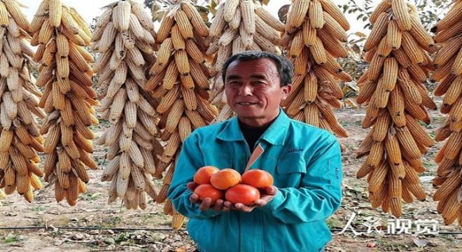 Xi: Çin'de yoksullukla mücadele hedefine zamanında ulaşıldı