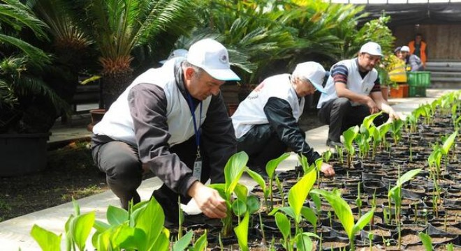 Yeni bahçıvanlar yetişecek